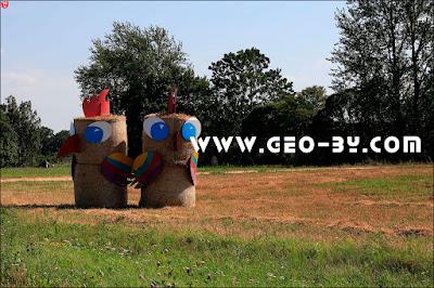 Праздник урожая ''Дожинки''. Соломенные фигуры свиней