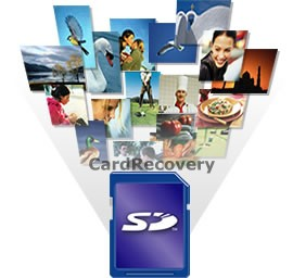 Recover Deleted or Corrupted Photos from Memory Card