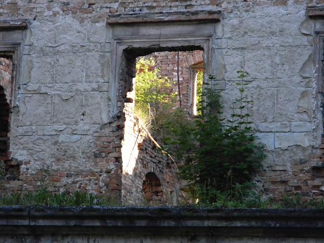 Okna ruin pałacowych w Zatoniu przedstawiają interesujący widok.