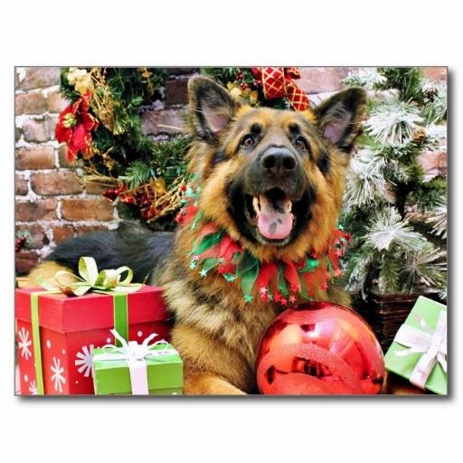 Tierische Weihnachtsgrüße.Schäferhunde Blog An Alle Schäferhunde Tierische Weihnachtsgrüsse