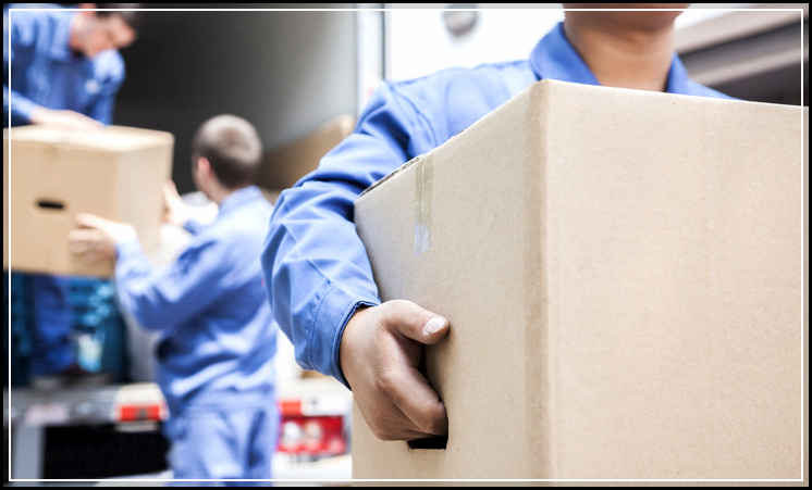 Best Services from a Leading Air Freight Australia Domestic Company
