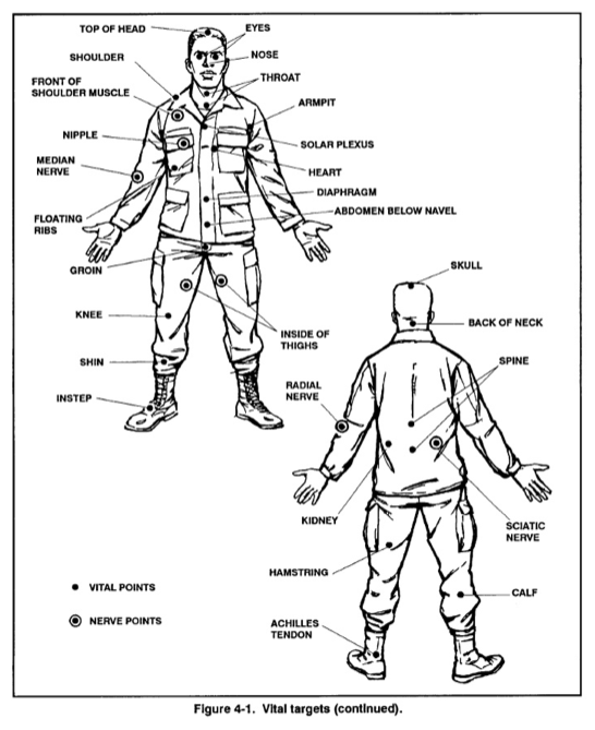 face pressure points diagram alligator food chain xt46 extreme training blog: krav maga   hand to combat techniques