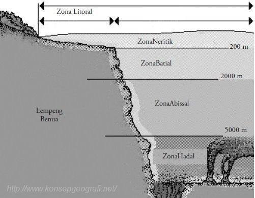Zona Laut