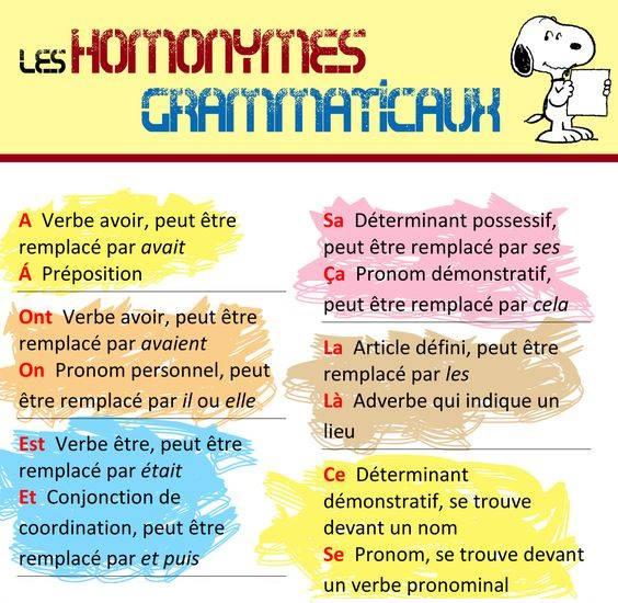 Homonimy - teoria 5 - Francuski przy kawie
