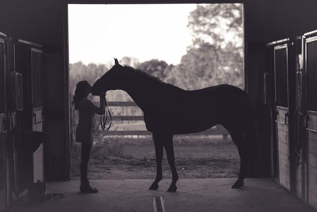 image d'une cavalière faisant un bisou sur le nez de son cheval
