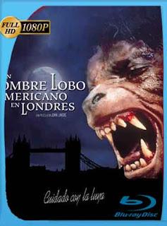 Hombre Lobo Americano En Londres 1981 HD [1080p] Latino [Mega]dizonHD