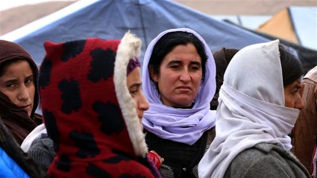 354 Izadi women rescued by Iraqi forces from Daesh in Fallujah