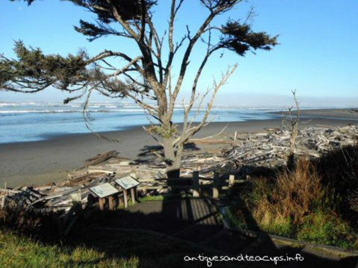 Antiques Pacific Beach Ca