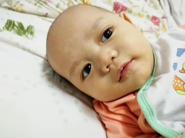 Glow Gelenggang Untuk Rawat Panau Baby Daim