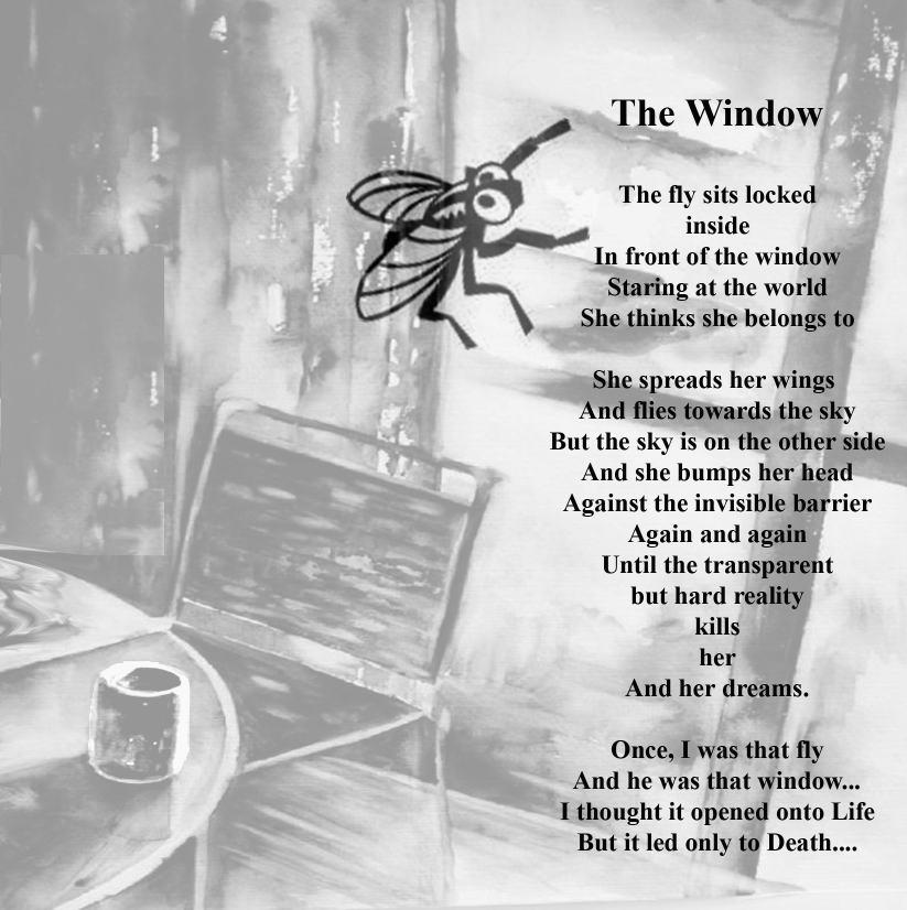 Life Quotes Poetry: Muhammad Nouman Ali Sheroz Awais Iqbal Talha Mohsin Riaz