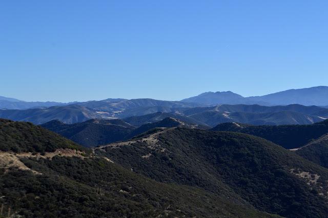 ridge line with road and fuel break