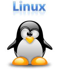 cara-belajar-praktis-perintah-dasar-linux-bagi-pemula