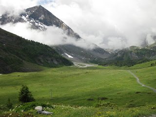 Gravel path continues through an open meadow with flowers, nearby peak with snow and clouds, Gemmipass, Switzerland