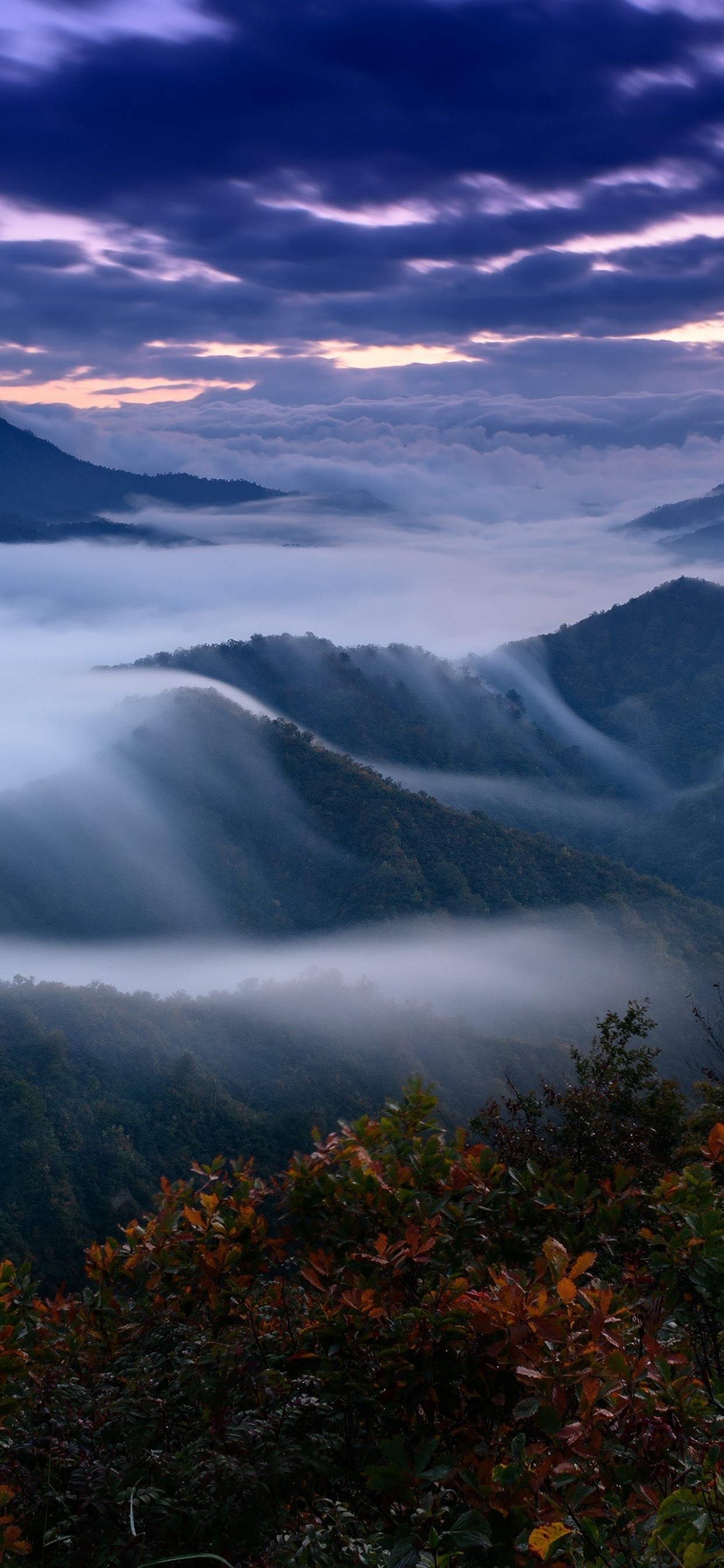 Mountain Fog Scenery Landscape Nature 4k Wallpaper 180
