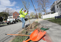 Scott Carlin planted a spring snow crabapple along Hyde Avenue in Newton. (Credit: Suzanne Kreiter/Globe Staff) Click to Enlarge.
