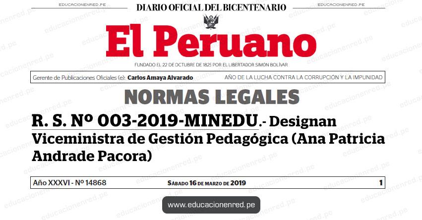 R. S. Nº 003-2019-MINEDU - Designan Viceministra de Gestión Pedagógica (Ana Patricia Andrade Pacora) www.minedu.gob.pe