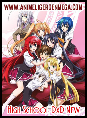 High School DxD New: Todos los Capítulos (12/12) + OVAS (1/1) [MEGA - MediaFire] BD - HDL