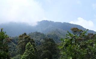 Menjajaki Alam Gunung Salak