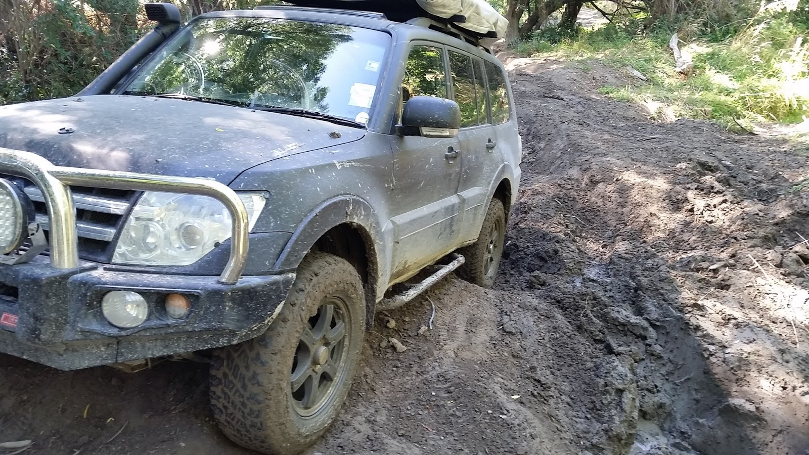 Since the Shogun came to New Zealand     - Pajero 4WD Club