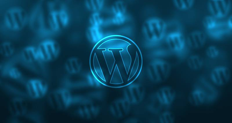 WordPress Is The Future Of Web Development