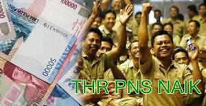 THR PNS 2018 Akan Naik