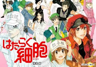 Hataraku Saibou - Episódio 01