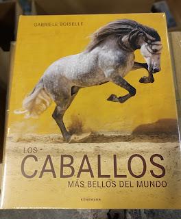 Los caballos más bellos del mundo