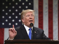 IMMIGRATION DEAL: TRUMP 'I'D LOVE TO SEE A SHUTDOWN' IF DEMOCRATS DON'T AGREE TO WALL.