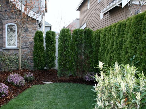 Garden Design Ideas For Small Front Gardens