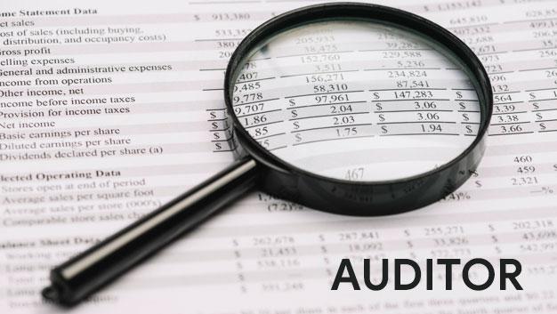 Pengertian Auditor Tugas dan Tanggung Jawabnya