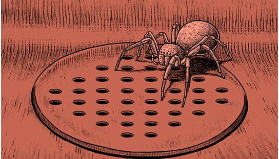 Hắc Ám Truyện #116: Con nhện
