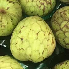 فاكهة القشطة - الشيريمويا