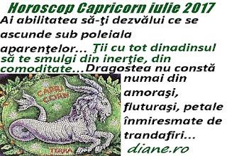 Horoscop iulie 2017 Capricorn
