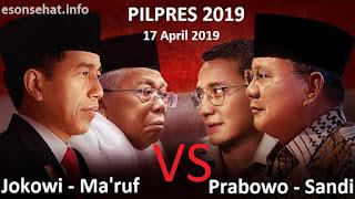 pilpres-2019-pasangan-jokowi