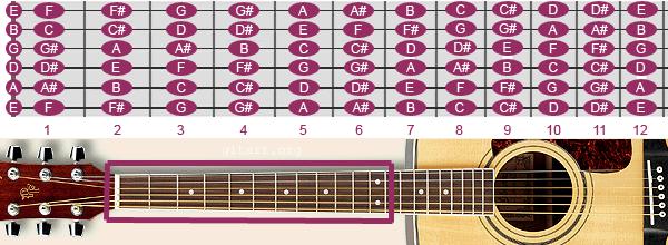 Vị trí các nốt nhạc trên đàn guitar