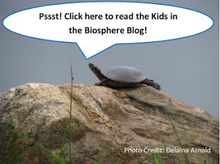 http://kidsinthebiosphere.blogspot.ca/