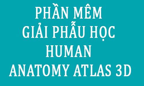phan mem giai phau hoc human anatomy atlat 3D - toi hoc y