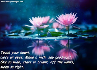 Touch your heart, close ur eyes. Make a wish, say goodnight. Sky so wide, stars so bright, off the lights, sleep so tight.