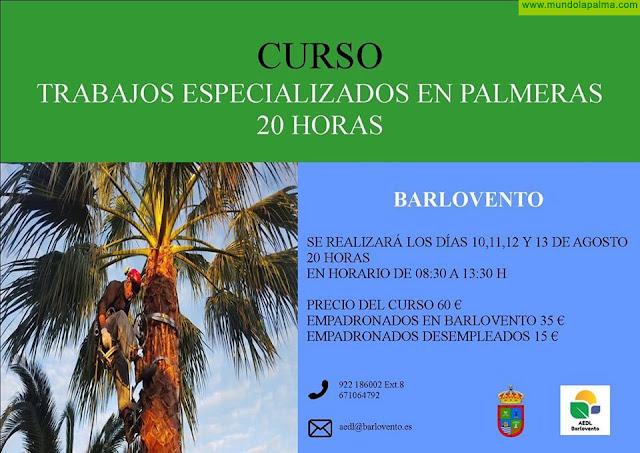 Barlovento: Curso en trabajos especializados en Palmeras