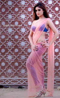 Actress Sony Charista Latest Pictureshoot Gallery in Saree  0013.jpg