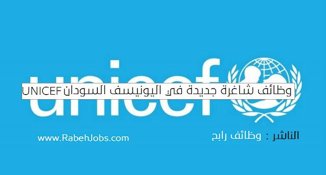 مطلوب سياسي اجتماعي لليونسيف UNICEF Sudan وظائف للسودانيين