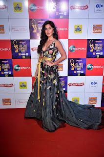 Katrina Kaif At Zee Cine Awards 2019
