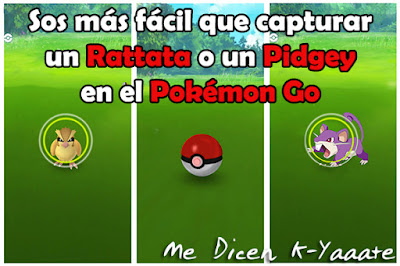 pidgey rattata pokemon go humor
