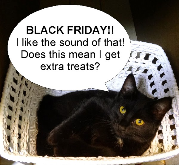 7 reasons why black cats love Black Friday!! - The Wildcat ... |Black Cat Friday