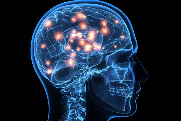 """The innovation could permit """"Matrix""""- style downloading of data to the cerebrum"""