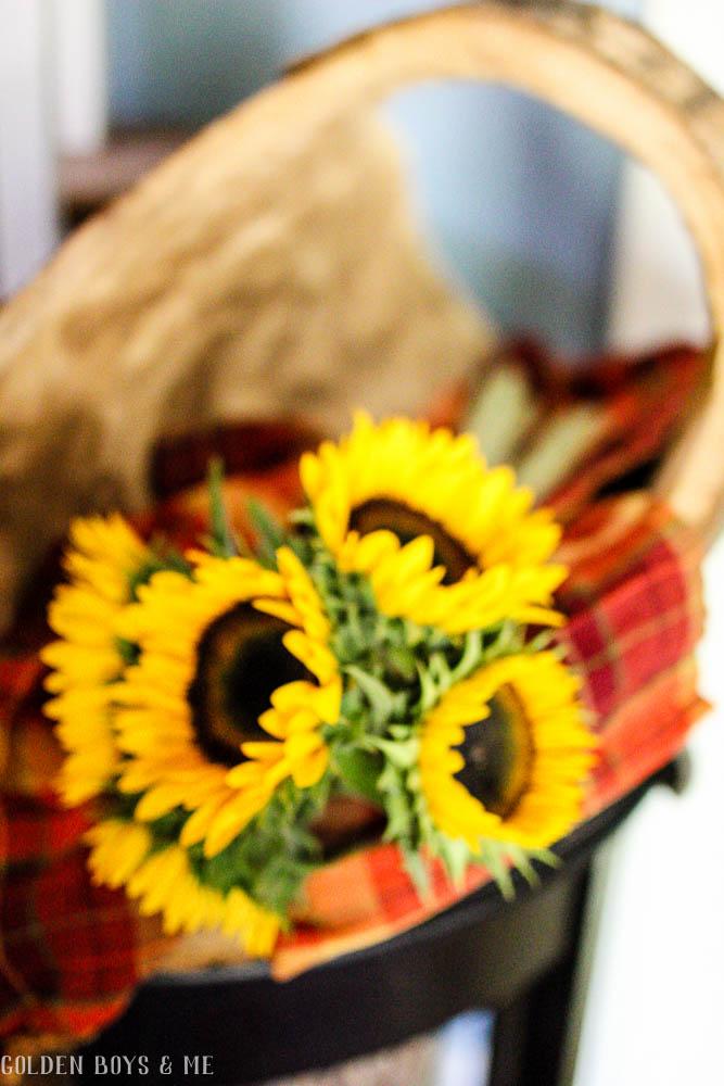 Split log basket with sunflowers as fall decor - www.goldenboysandme.com