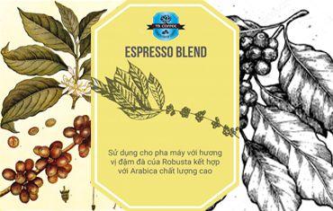 espresso blend buon ma thuot coffee