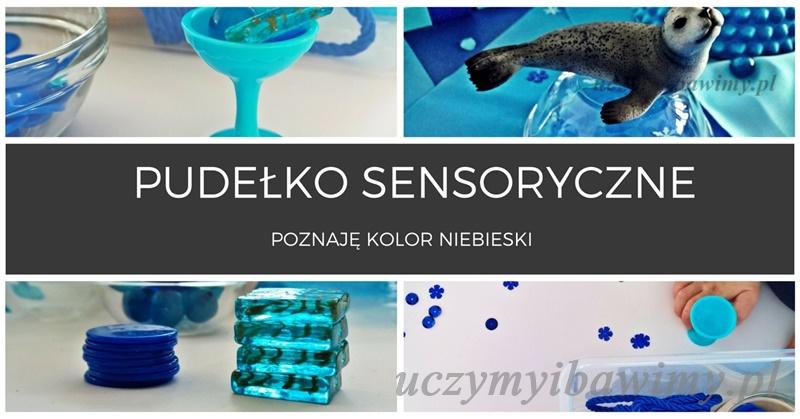 Pudełko sensoryczne - poznaję niebieski kolor