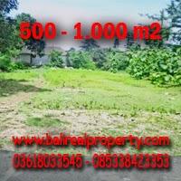 Tanah di Ubud Bali dijual Murah