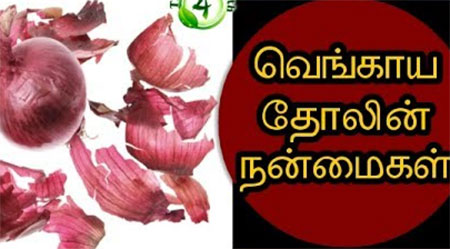 Onion skin in tamil